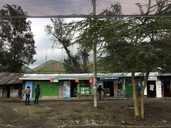 Flower farm in Naivasha with shops in the foreground