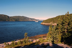 Saguenay River Ferry - Tadoussac (Québec, Canada) (Andrea Moscato) Tags: andreamoscato canada america fiume river water freshwater acqua blue green view vista vivid overlook trees pine pietra stones rock fiordo landscape paesaggio parco park nature natura natural naturale national np nationalpark boat shadow light day montagna mountain forest wood