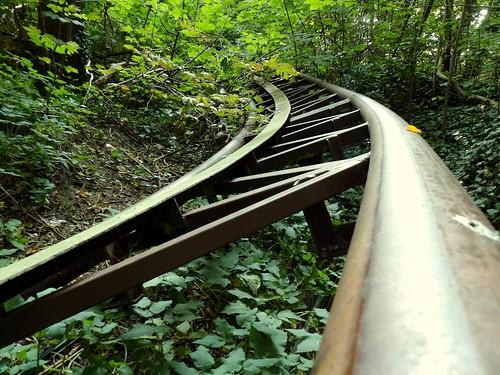 Les rails se perdent en forêt