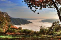 Nebel im Moseltal (oblakkurt) Tags: nebelstimmung mosel herbst