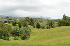 lowlands of eastern kauai (hannu & hannele) Tags: kauai hawaii wailua landscape scenery beautiful tropics tropical green lush palm trees mountains hills grass grassland plant field outdoor clouds cloudy fog mist nikon d700