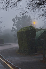 Mist and Mystery (Rich Saunders) Tags: mist weather mistyday fog streetlight badweather mystery twilight evening gloom foggy misty