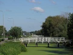 IMG_0057 (Momo1435) Tags: nederland groene hart alphen meije aarlanderveen ter aar