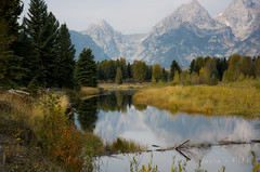 halcyon (laura's POV) Tags: mountains nature river jackson wyoming tetons grandtetonnationalpark lauraspointofview lauraspov