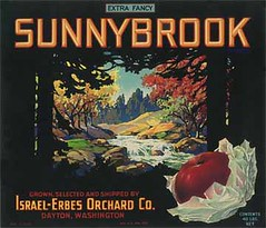 "Sunnybrook • <a style=""font-size:0.8em;"" href=""http://www.flickr.com/photos/136320455@N08/21283683080/"" target=""_blank"">View on Flickr</a>"