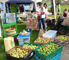 Reading Town Meal - Apples! (karenblakeman) Tags: uk food fruit reading october gb apples berkshire 2015 forburygardens localcommunities readingfoodgrowingnetwork rfgn readingtownmeal2015