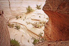 Channels (K. Sawyer Photography) Tags: newmexico lines landscape rocks canyon erosion sediment geology tentrocks shrubs nationalmonument rockformations kashakatuwetentrocksnationalmonument tentrocksnationalmonument pajaritoplateau usnationalmonument cochitinewmexico