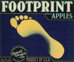 """Footprint • <a style=""""font-size:0.8em;"""" href=""""http://www.flickr.com/photos/136320455@N08/21445494176/"""" target=""""_blank"""">View on Flickr</a>"""