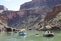 Grand Canyon 2015 727