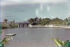 Coconut Island Lagoon Inlet 1949 (Kamaaina56) Tags: hawaii oahu slide kaneohe 1940s coconutisland