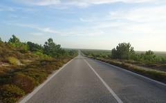 Estrada Atlntica, die letzten 10 km Schnurrgerade bis nach Praia de Vieira, Portugal (Carsten@Berlin) Tags: portugal 2016 estradaatlntica schnurrgerade endlos estradaatlantica