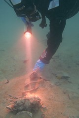 Kurz vor Schluss (habi) Tags: diving hausriff renzo thunersee