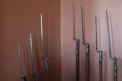 Bayonets (CColon_C:) Tags: art museum gun weapon guns muskets blade bayonets