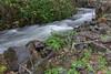 2015-07787 (jjdun7) Tags: water oregon creek forest river landscape waterfall scottsmills
