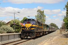 2015-11-21 C501-C510 Violet Town 9L81 (deanoj305) Tags: railroad town violet espee c510 steamrail c501 arhsact 9l81 csonthenortheasttour vlinecclass