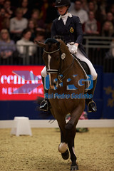 HB110499 (RPG PHOTOGRAPHY) Tags: world london cup olympia dressage 2015 tiamo jorinde verwimp