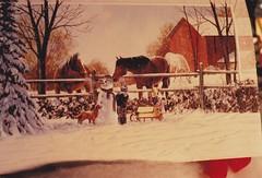 ** Le Bonhomme de neige ** (Impatience_1 (Mon PC- probl. interm.)) Tags: winter horse dog chien snow cheval snowman child hiver scanned neige enfant rolland impatience bonhommedeneige numrise