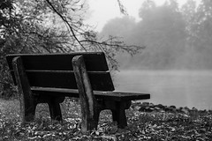 Herbst (schulze31) Tags: blackandwhite blackandwhitephotography schwarzweiss herbst autumn flus river schwarzweissfotografie