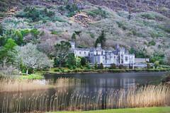 41/52 Kylemore abbey (Leo Bissett) Tags: kylemore abbey mayo connemara mountains connaught ireland