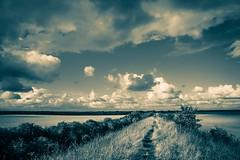 Devil's Dyke Walk-14 (adambowie) Tags: devilsdyke cambridgeshire newmarket