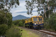 Walker (Dobpics O'Brien) Tags: rail railway railways victorian victoria vr railcar 22rm walker yarra valley yvr healesville tunnel