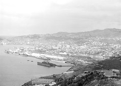 14; Elevated view of the Thorndon Wharves and Railway Yards (Wellington City Council) Tags: wellington historicwellington 1800s 1900s 1950s
