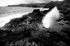 Nakalele Blowhole (BrendanDougherty) Tags: nakaleleblowhole maui hawaii