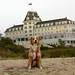 Laika Vacationing @ Ocean House, Rhode Island