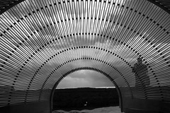 Dynamics in Impermanence -Nicole Larkin (NSW) (Val in Sydney) Tags: sculpture sxsbondi sculpturebythesea nsw australia australie art artwork