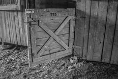 Wk 20: Doors (shannon_blueswf) Tags: door stall blackwhite blackandwhite horse horses bitter sweet beloved neverforgotten