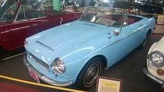 Datsun Fairlady (mncarspotter) Tags: uminonakamichi car museum classic cars japan classiccarmuseum  nostalgiccarmuseum datsun