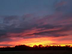 Sunset (lewi1553) Tags: sunset beautyinnature nature twilight trees sky lanarkshire scenery clouds skies colours