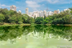 The buldings reflection over the lake in the Park (JunotPhotography) Tags: grass eco spring tranquility artistic aclimacao nature reflection monument ecology beauty trees sightseeing jardindacclimatation brazil architecture environment brazilian skyline acclimation carlos paolo landscape art mirror america landmark panoramic preserve cityscape botelho building south playing garden sao scenic urban people beautiful travel paulo city park visiting green ecological outdoor culture latin