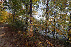 lakeshore path (ibm4381) Tags: uw madison campus mendota lakeshore