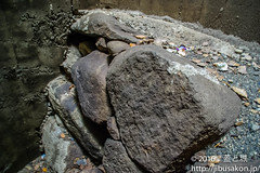 toyotomiishigaki (manhole_castle) Tags: