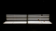 Rows of light (albi_tai) Tags: germania dsseldorf linee luce panchina bench luminoso light righe foglie notturno notte albitai samsung s7 figofono