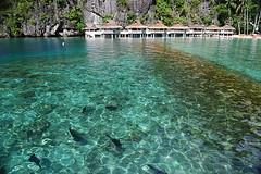 Filippine_el_nido_miniloc_resort_Palawan (bruno_colombi1) Tags: miniloc