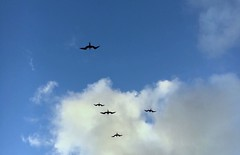 'iwa over Kailua (Kanalu Chock) Tags: iwa greatfrigatebird frigataminor kailua oahu hawaii