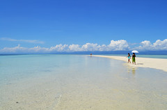 Virgin Island Beach - Bohol Philippines (prahatravel) Tags: virgin island bohol panglao philippines filippinene strand beautiful clean clear blue ren y hopping trip travel tourist asia boat
