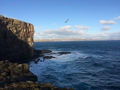 Nólsoy (purkil) Tags: nólsoy nolsø færøerne faroeislands føroyar