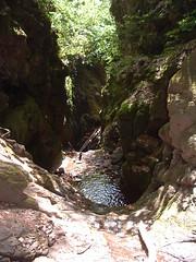 014Tarjnka-szurdok (ossian71) Tags: magyarorszg hungary mtra termszet nature tjkp landscape szurdok canyon