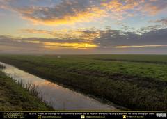 Sunrise (andrewtijou) Tags: andrewtijou nikond7200 europe netherlands southholland dutch delft sunrise swan mist morningmist