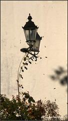 Licht und Schatten (Jolanda Donn) Tags: laternen lichtundschatten klosterrheinau rhein kantonzrich oktober oktober2016 30102016 canoneos70d