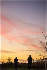 Starling watching (FlickrDelusions) Tags: rspb murmuration oxfordshire rspbotmoor starlingsflocking otmoor