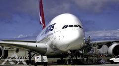 qantasa380ramp (Timothy Hucksoll Photography) Tags: klax lax qantas a380 airbus