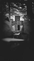Foggy mornings are for digging... (AxelBergeron) Tags: graveyard cemetery cimetire mort fog foggy brouillard morning matin fall winter hiver automne morbid morbide lugubre dark tomb tombe tombstone pierretombale dead death blackandwhite blackwhite blacknwhite bw bwphotography noiretblanc monochrome monochromatic sonya5000 a5000 sel1650