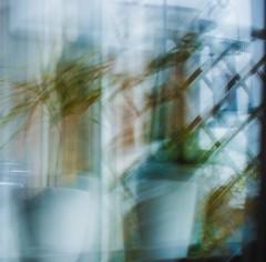 _DSC4654 (lanzette) Tags: multipleexposures incameramultipleexposures window vase