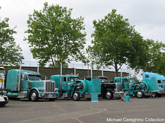 Oldland Distribution Peterbilts on display (Michael Cereghino (Avsfan118)) Tags: show oldland distribution peterbilt peterbilts 379 389 2016 aths national truck trucking convention american historical society salem or oregon sleeper sleepers transportation