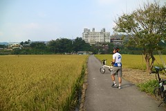 關西市區.龍少鳥車 vs 稻田 (nk@flickr) Tags: friend taiwan hsinchu cycling 新竹 20161105 台湾 cheven guanxi 台灣 關西 canonefm22mmf2stm
