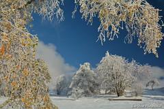 Couleurs d'automne en Savoie.